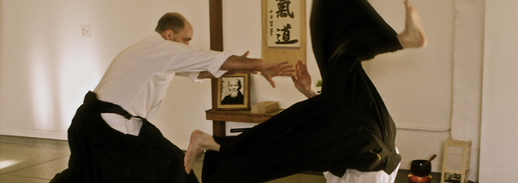 In addition to being a practical method of self defense, Aikido develops the practitioner toward being a fully realized person.