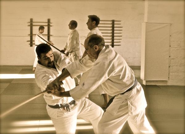 aikido (167).jpg