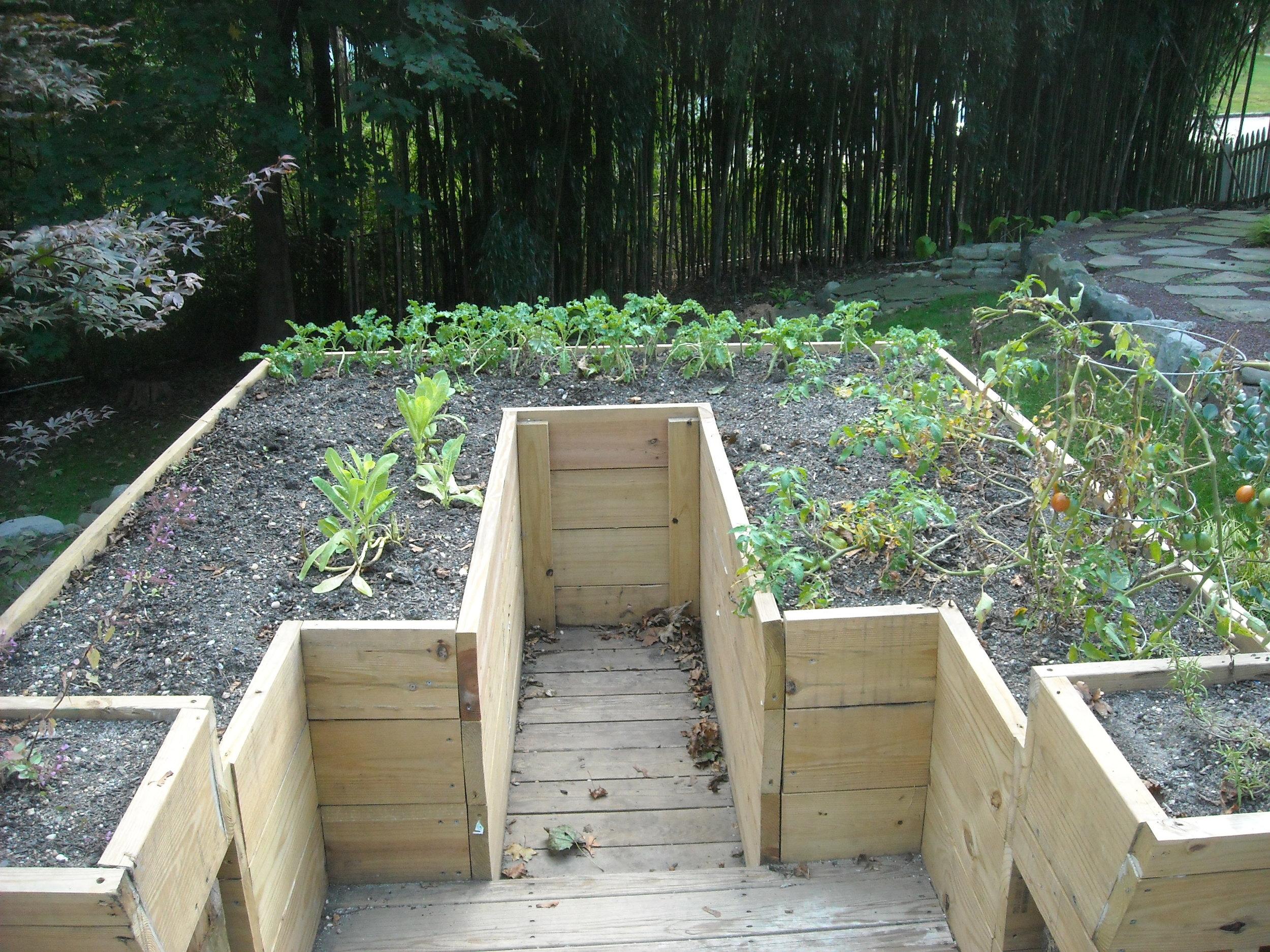 garden and wall 154.jpg