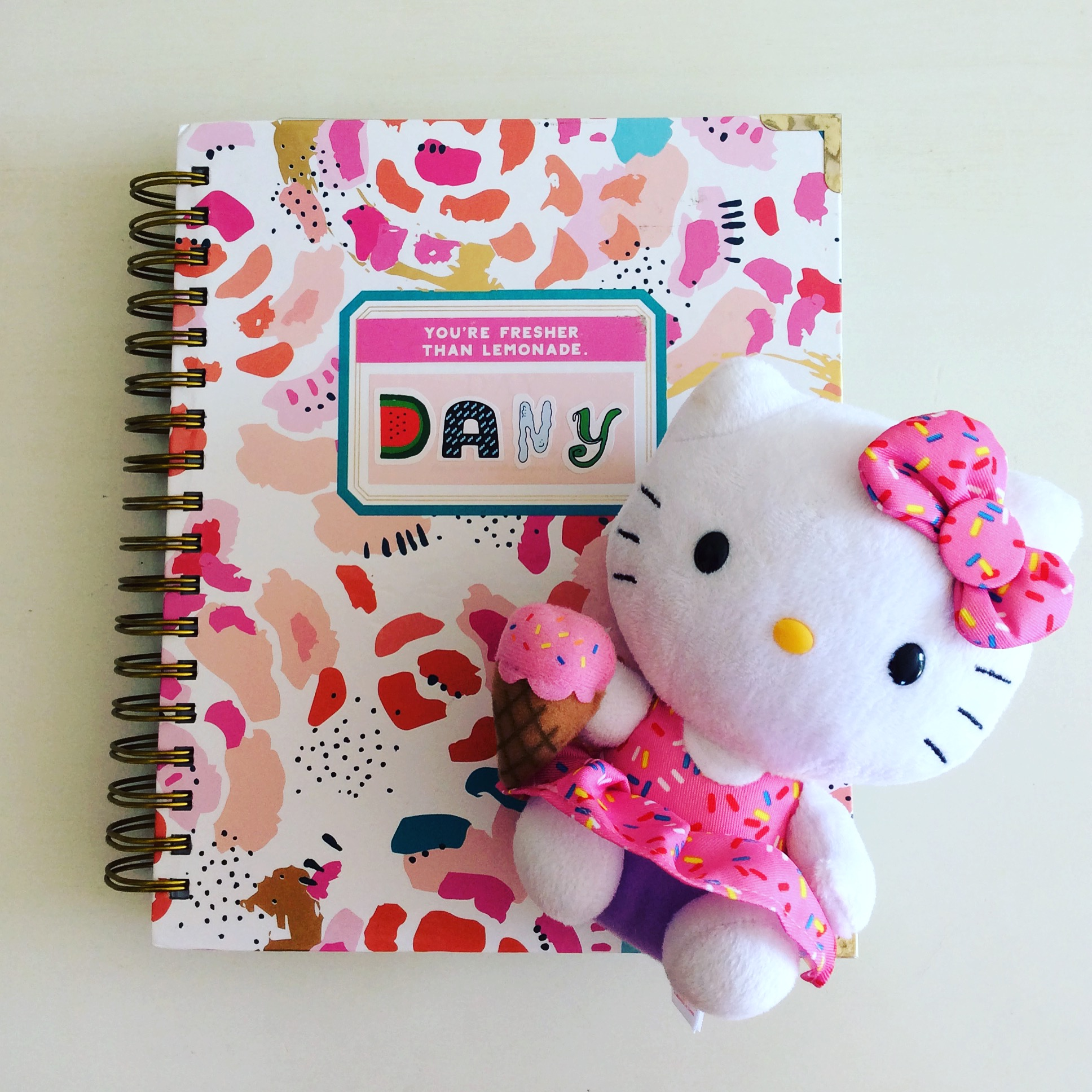 How I Get S* Done With My Planners -