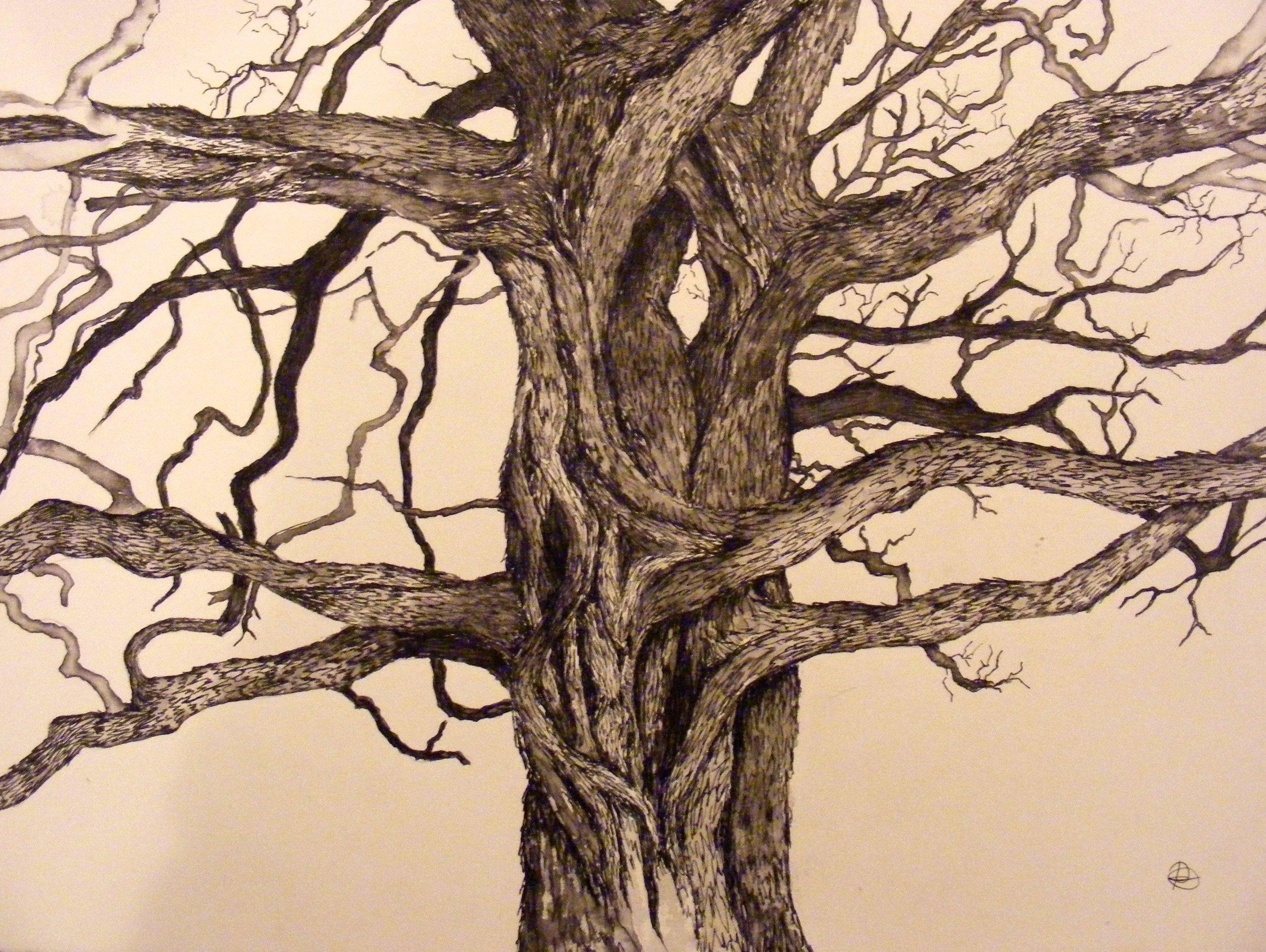 Rosabel Art Tree Series - 1 of 106.jpg