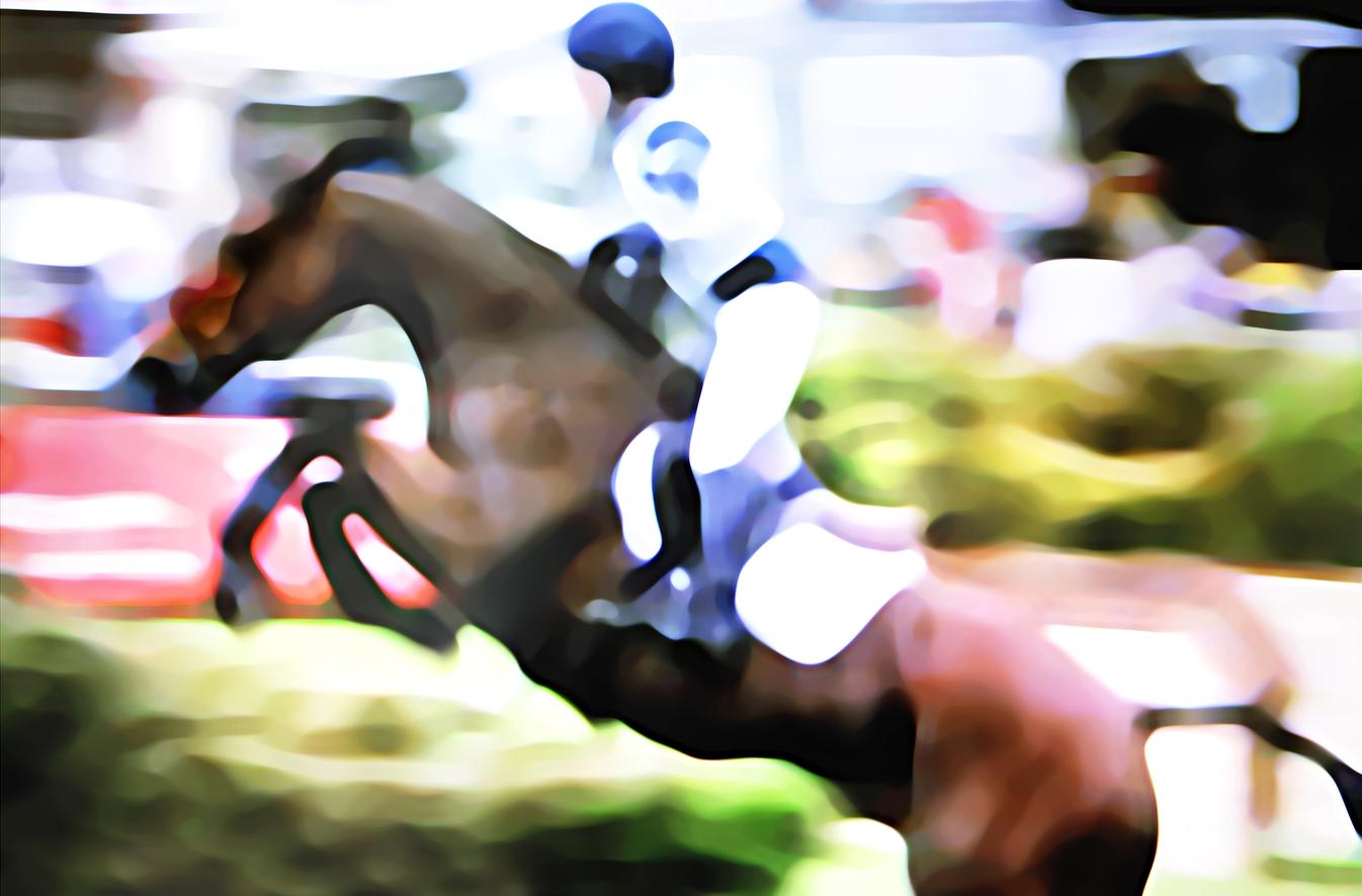 pferd 01.jpg