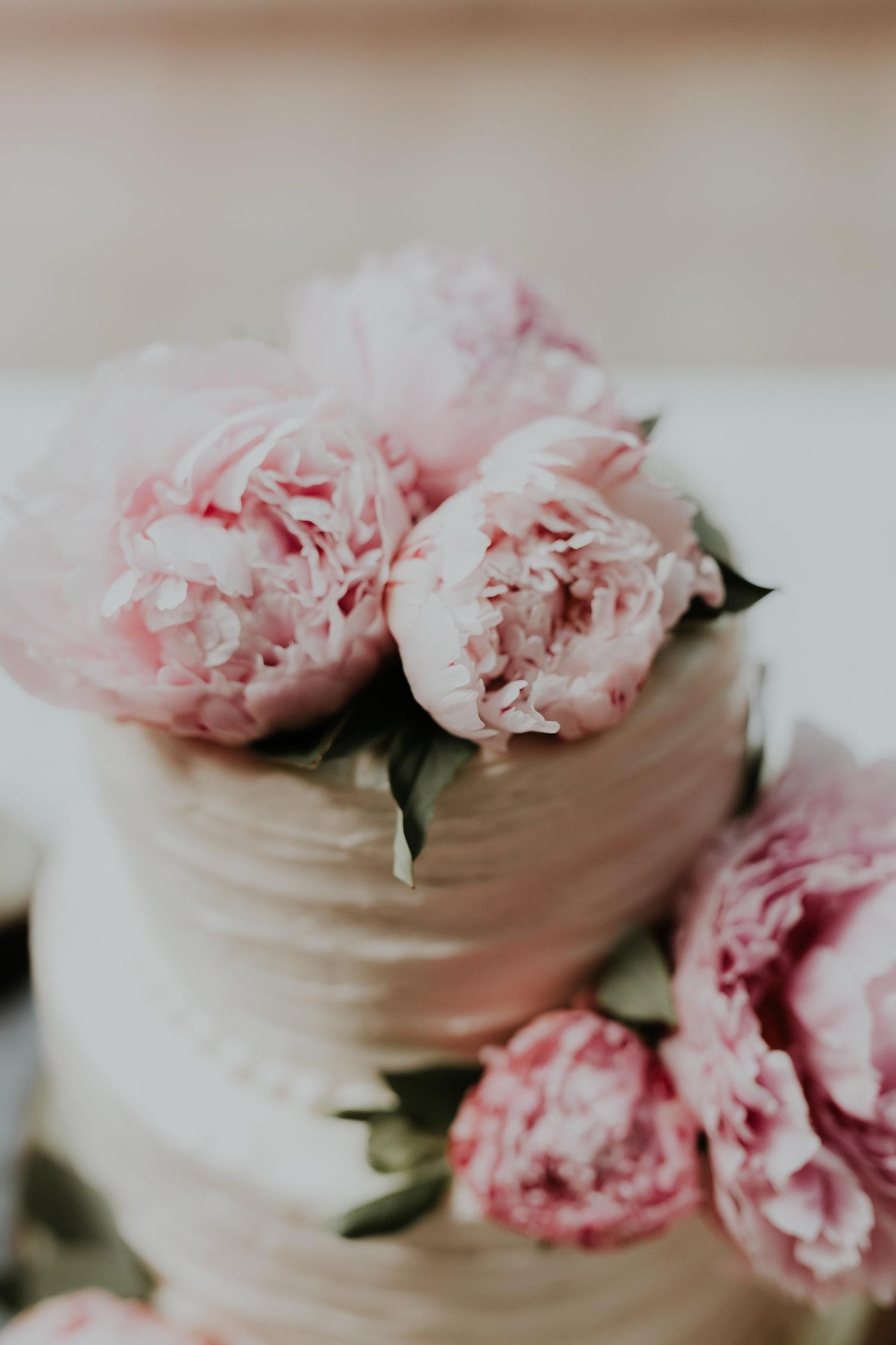 Alicia+lucia+photography+-+albuquerque+wedding+photographer+-+albuquerque+wedding+photography+-+new+mexico+wedding+photographer+-+new+mexico+wedding+cake_0016.jpg