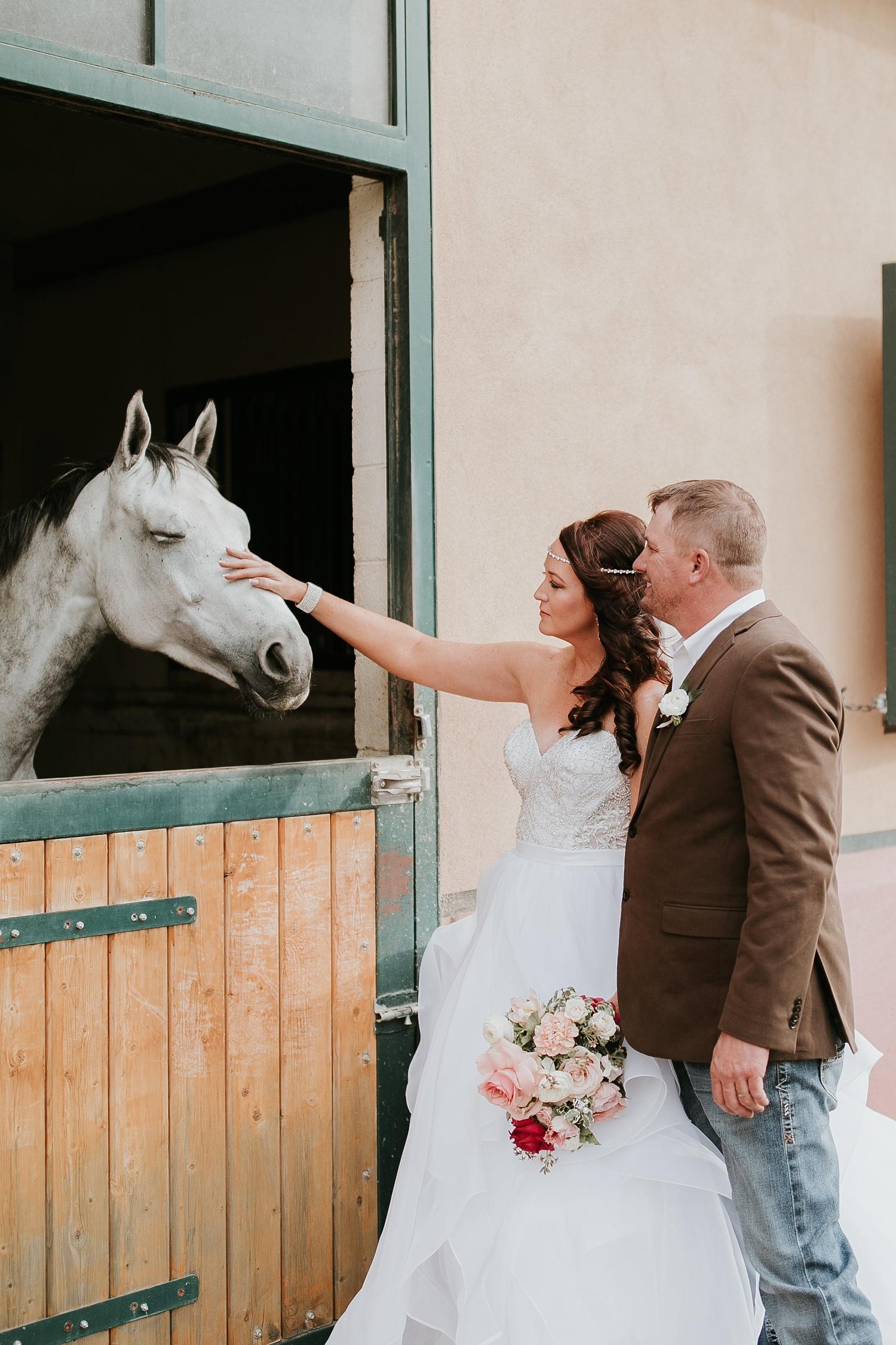 Alicia+lucia+photography+-+albuquerque+wedding+photographer+-+santa+fe+wedding+photography+-+new+mexico+wedding+photographer+-+new+mexico+engagement+-+la+mesita+ranch+wedding+-+la+mesita+ranch+spring+wedding_0056.jpg