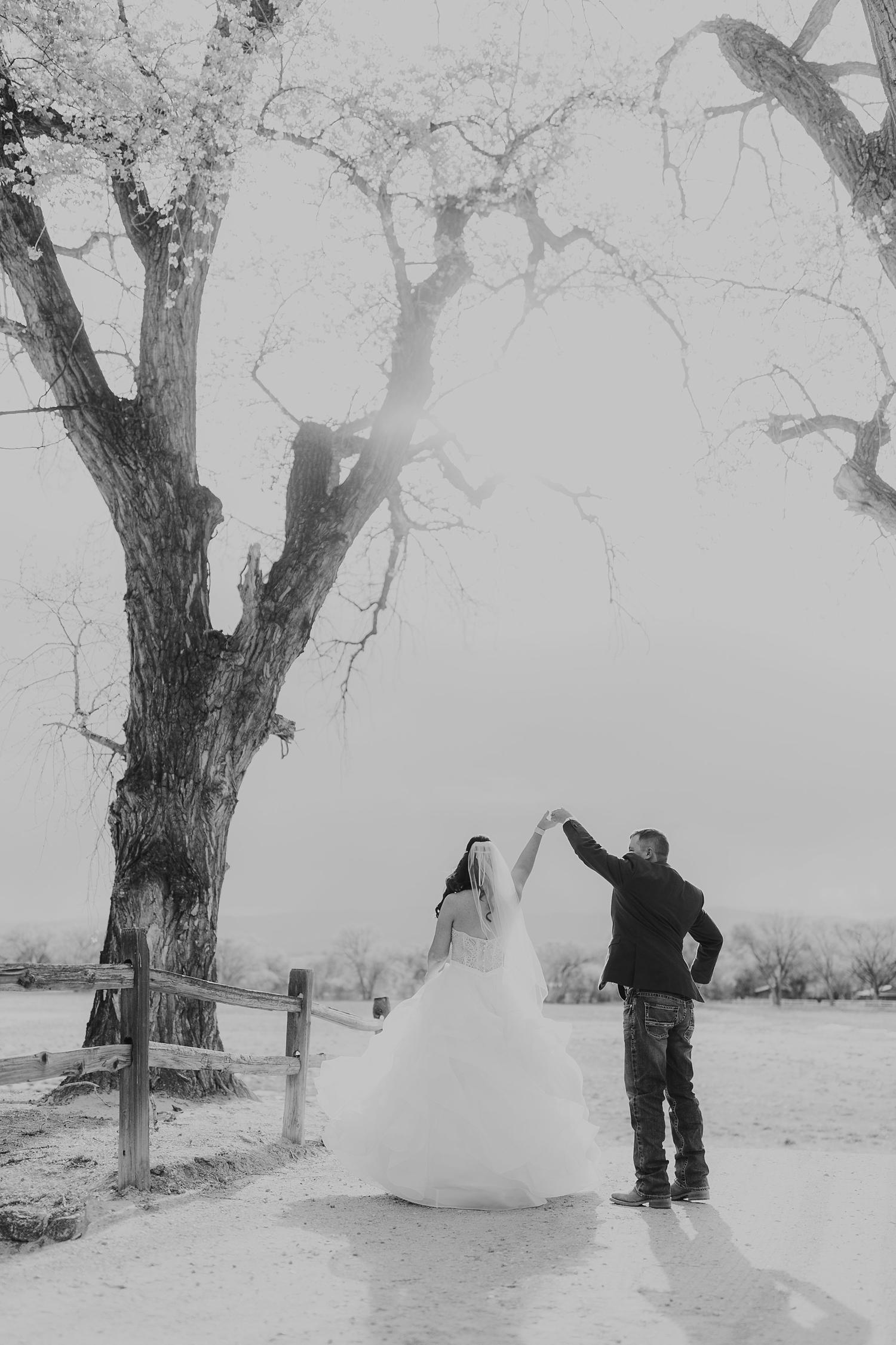 Alicia+lucia+photography+-+albuquerque+wedding+photographer+-+santa+fe+wedding+photography+-+new+mexico+wedding+photographer+-+new+mexico+engagement+-+la+mesita+ranch+wedding+-+la+mesita+ranch+spring+wedding_0065.jpg