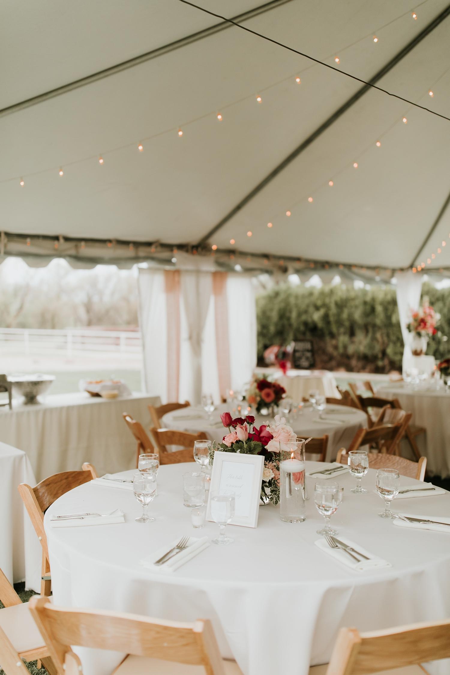 Alicia+lucia+photography+-+albuquerque+wedding+photographer+-+santa+fe+wedding+photography+-+new+mexico+wedding+photographer+-+new+mexico+engagement+-+la+mesita+ranch+wedding+-+la+mesita+ranch+spring+wedding_0074.jpg