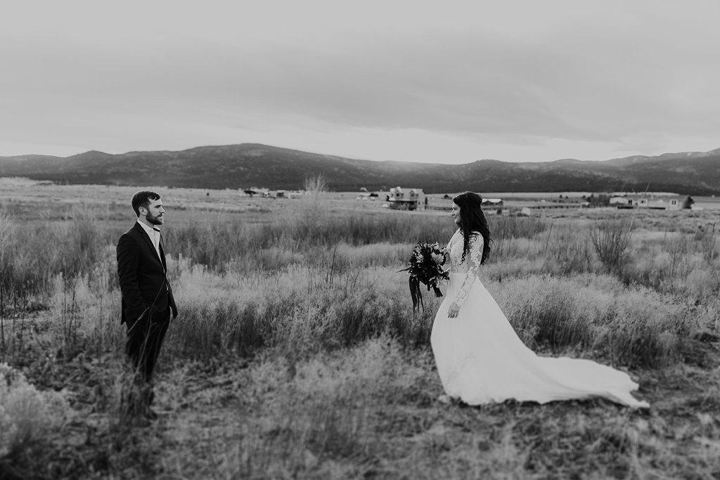 Alicia+lucia+photography+-+albuquerque+wedding+photographer+-+santa+fe+wedding+photography+-+new+mexico+wedding+photographer+-+eagles+nest+new+mexico+-+eagles+nest+wedding+-+eagles+nest+elopement+-+winter+wedding_0035.jpg