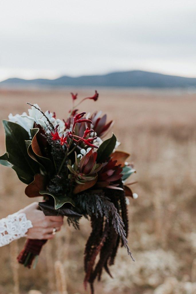Alicia+lucia+photography+-+albuquerque+wedding+photographer+-+santa+fe+wedding+photography+-+new+mexico+wedding+photographer+-+eagles+nest+new+mexico+-+eagles+nest+wedding+-+eagles+nest+elopement+-+winter+wedding_0064.jpg