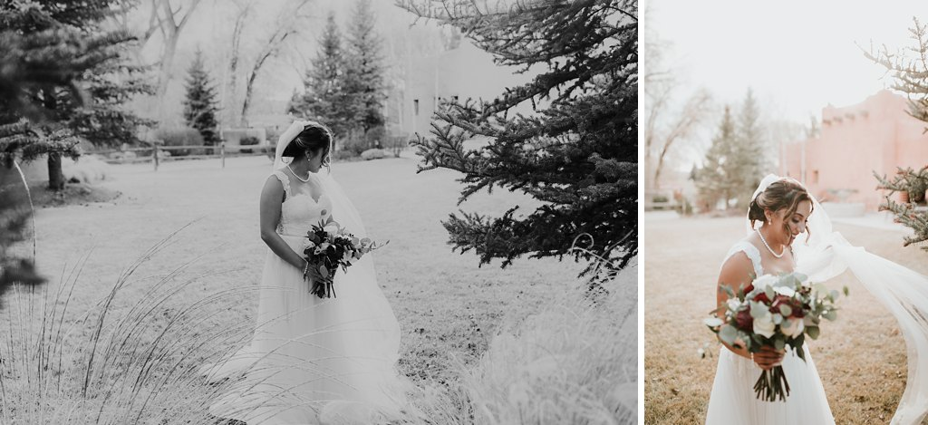 Alicia+lucia+photography+-+albuquerque+wedding+photographer+-+santa+fe+wedding+photography+-+new+mexico+wedding+photographer+-+taos+new+mexico+-+taos+wedding+-+el+monte+sagrado+wedding+-+winter+wedding_0094.jpg