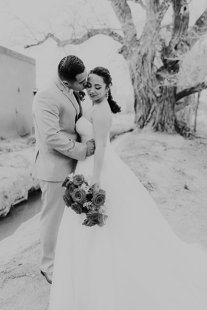 Alicia+lucia+photography+-+albuquerque+wedding+photographer+-+santa+fe+wedding+photography+-+new+mexico+wedding+photographer+-+albuquerque+wedding+-+albuquerque+winter+wedding_0049.jpg