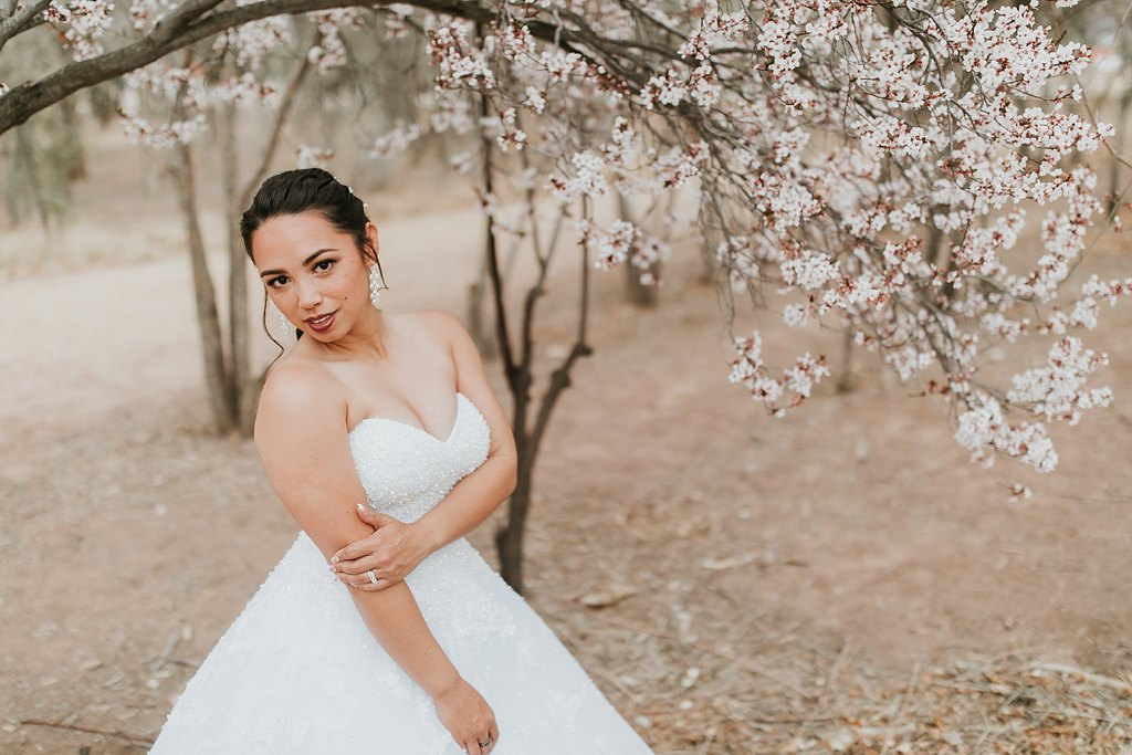Alicia+lucia+photography+-+albuquerque+wedding+photographer+-+santa+fe+wedding+photography+-+new+mexico+wedding+photographer+-+albuquerque+wedding+-+albuquerque+winter+wedding_0059.jpg