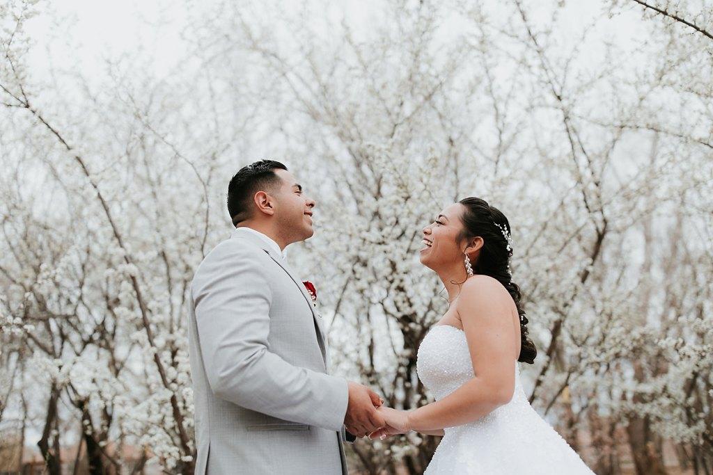Alicia+lucia+photography+-+albuquerque+wedding+photographer+-+santa+fe+wedding+photography+-+new+mexico+wedding+photographer+-+albuquerque+wedding+-+albuquerque+winter+wedding_0070.jpg