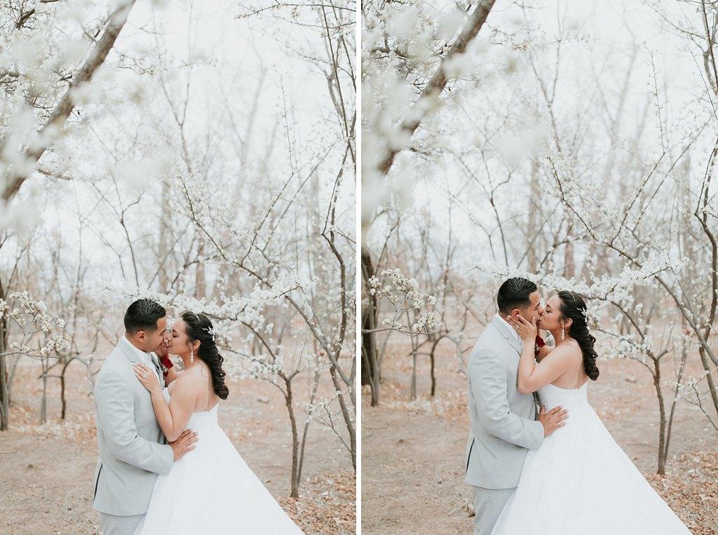 Alicia+lucia+photography+-+albuquerque+wedding+photographer+-+santa+fe+wedding+photography+-+new+mexico+wedding+photographer+-+albuquerque+wedding+-+albuquerque+winter+wedding_0073.jpg