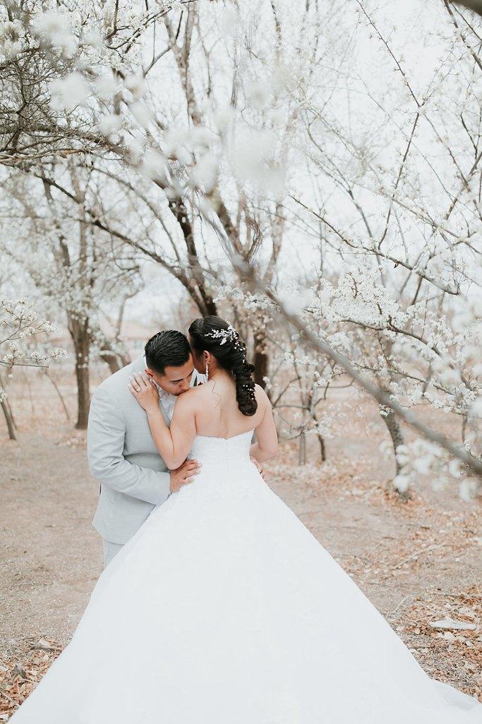 Alicia+lucia+photography+-+albuquerque+wedding+photographer+-+santa+fe+wedding+photography+-+new+mexico+wedding+photographer+-+albuquerque+wedding+-+albuquerque+winter+wedding_0074.jpg