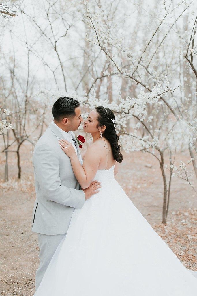 Alicia+lucia+photography+-+albuquerque+wedding+photographer+-+santa+fe+wedding+photography+-+new+mexico+wedding+photographer+-+albuquerque+wedding+-+albuquerque+winter+wedding_0075.jpg