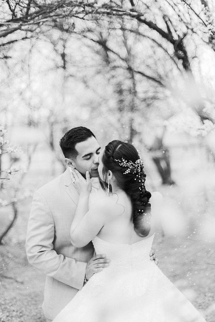 Alicia+lucia+photography+-+albuquerque+wedding+photographer+-+santa+fe+wedding+photography+-+new+mexico+wedding+photographer+-+albuquerque+wedding+-+albuquerque+winter+wedding_0076.jpg
