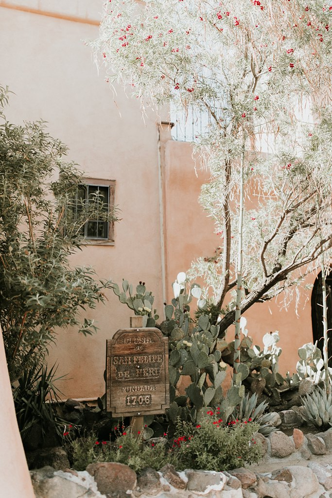 Alicia+lucia+photography+-+albuquerque+wedding+photographer+-+santa+fe+wedding+photography+-+new+mexico+wedding+photographer+-+old+town+albuquerque+wedding+-+el+zocalo+wedding+-+new+mexcio+spring+wedding_0076.jpg