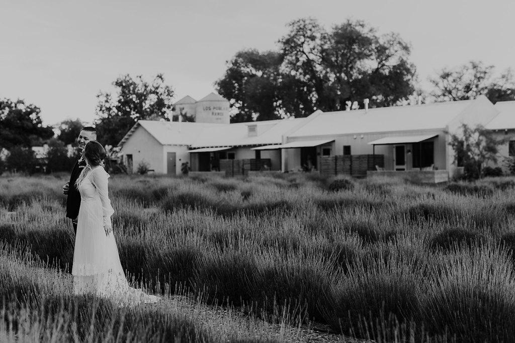 Alicia+lucia+photography+-+albuquerque+wedding+photographer+-+santa+fe+wedding+photography+-+new+mexico+wedding+photographer+-+los+poblanos+wedding+-+los+poblanos+summer+wedding+-+rainy+los+poblanos+wedding_0106.jpg