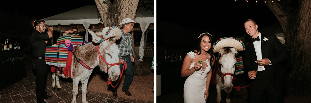 Alicia+lucia+photography+-+albuquerque+wedding+photographer+-+santa+fe+wedding+photography+-+new+mexico+wedding+photographer+-+la+posada+wedding+-+la+posada+summer+wedding_0111.jpg