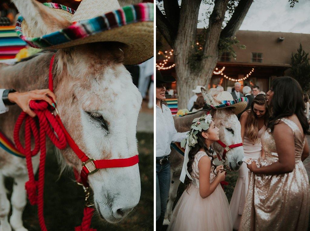 Alicia+lucia+photography+-+albuquerque+wedding+photographer+-+santa+fe+wedding+photography+-+new+mexico+wedding+photographer+-+new+mexico+wedding+-+santa+fe+wedding+-+la+posada+santa+fe+-+santa+fe+wedding+venue+feature_0018.jpg
