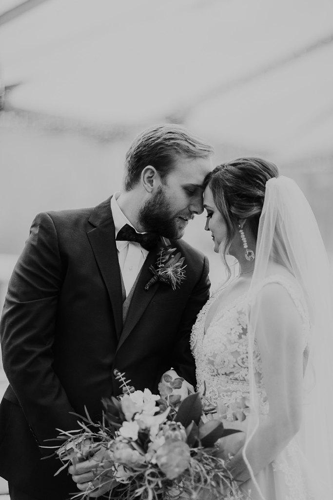 Alicia+lucia+photography+-+albuquerque+wedding+photographer+-+santa+fe+wedding+photography+-+new+mexico+wedding+photographer+-+new+mexico+wedding+-+santa+fe+wedding+-+la+posada+santa+fe+-+la+posada+wedding+-+la+posada+fall+wedding_0068.jpg