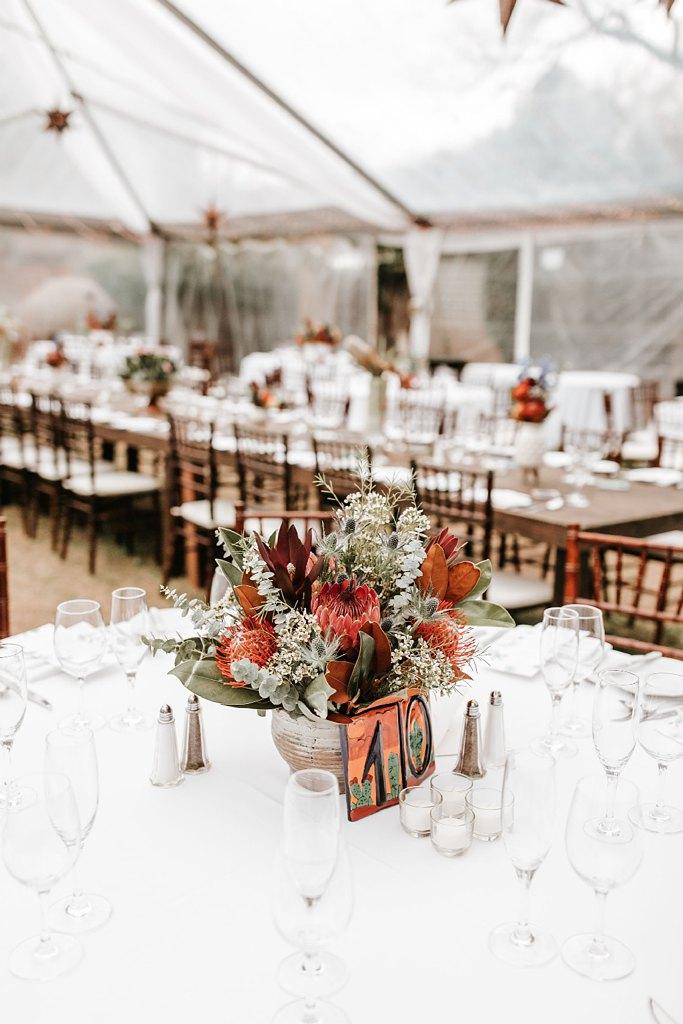 Alicia+lucia+photography+-+albuquerque+wedding+photographer+-+santa+fe+wedding+photography+-+new+mexico+wedding+photographer+-+new+mexico+wedding+-+santa+fe+wedding+-+la+posada+santa+fe+-+la+posada+wedding+-+la+posada+fall+wedding_0115.jpg