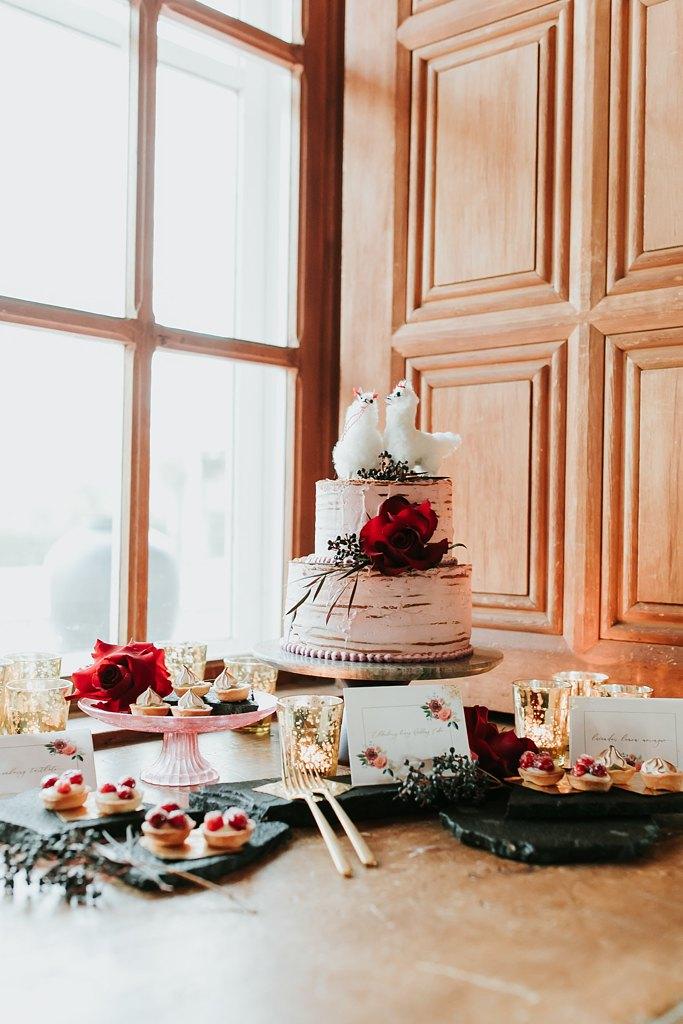 Alicia+lucia+photography+-+albuquerque+wedding+photographer+-+santa+fe+wedding+photography+-+new+mexico+wedding+photographer+-+new+mexico+wedding+-+styled+wedding+-+styled+elopement+-+los+poblanos+wedding_0058.jpg