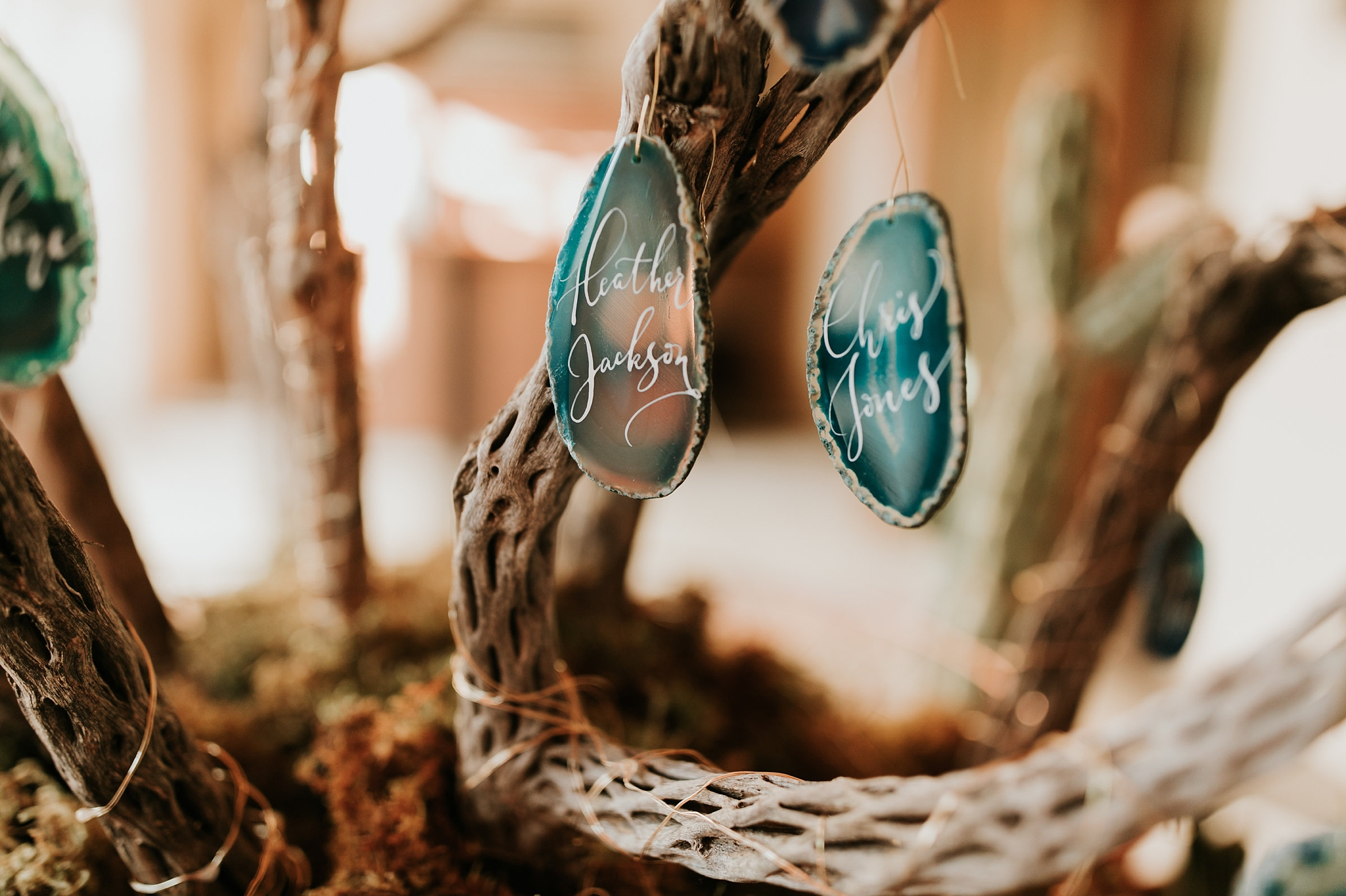 Alicia+lucia+photography+-+albuquerque+wedding+photographer+-+santa+fe+wedding+photography+-+new+mexico+wedding+photographer+-+new+mexico+wedding+-+wedding+-+winter+wedding+-+wedding+reception+-+winter+wedding+reception_0062.jpg
