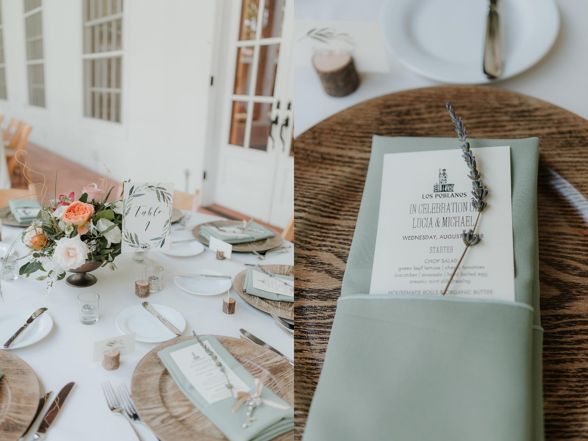 Alicia+lucia+photography+-+albuquerque+wedding+photographer+-+santa+fe+wedding+photography+-+new+mexico+wedding+photographer+-+new+mexico+wedding+-+wedding+photographer+-+wedding+photographer+team_0066.jpg