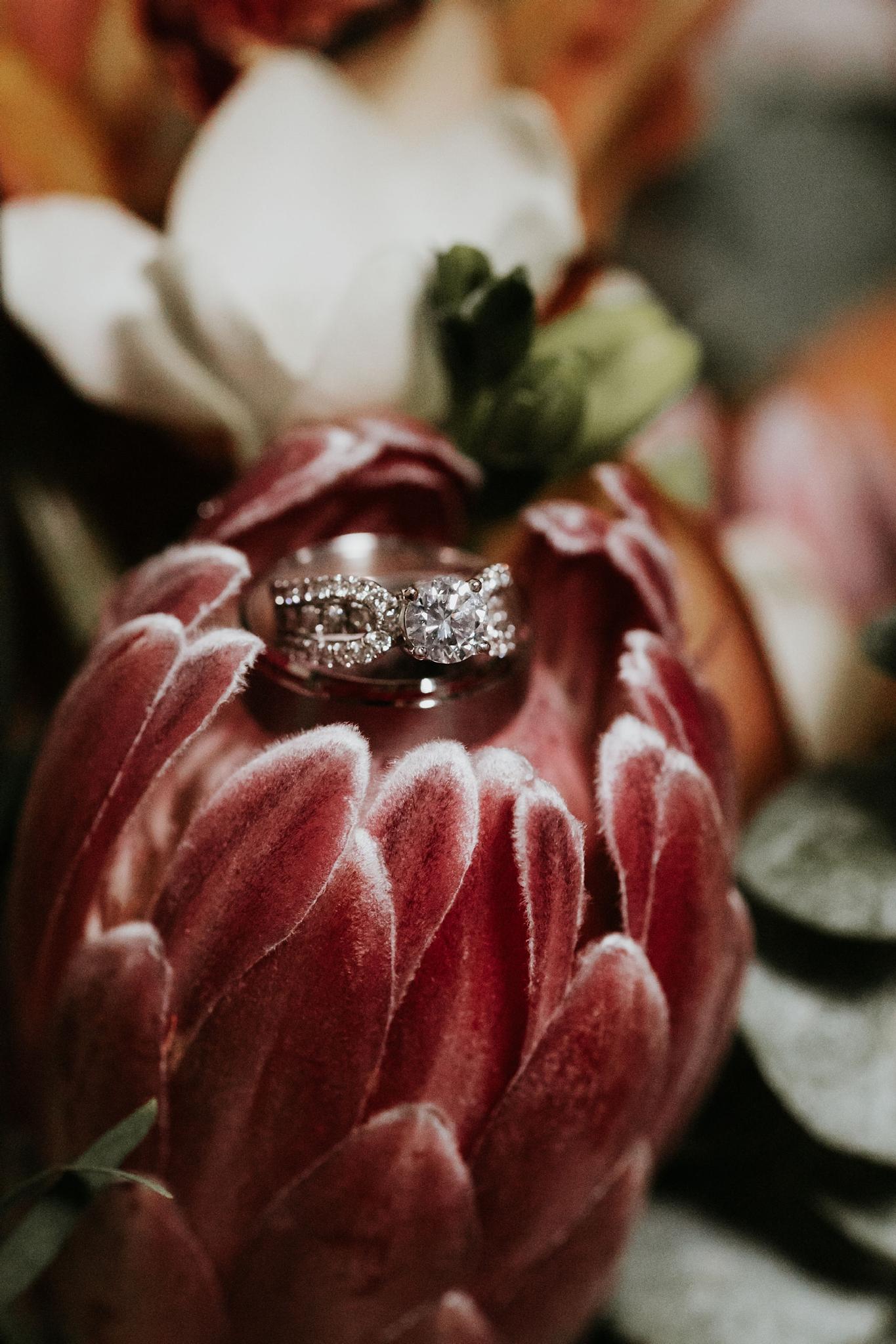 Alicia+lucia+photography+-+albuquerque+wedding+photographer+-+santa+fe+wedding+photography+-+new+mexico+wedding+photographer+-+new+mexico+wedding+-+santa+fe+wedding+-+albuquerque+wedding+-+wedding+rings+-+engagement+rings_0025.jpg