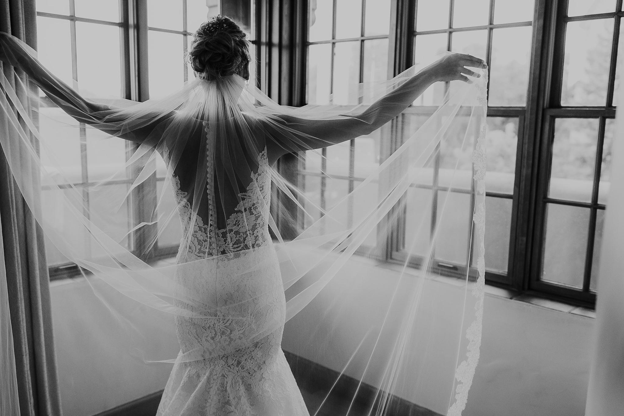 Alicia+lucia+photography+-+albuquerque+wedding+photographer+-+santa+fe+wedding+photography+-+new+mexico+wedding+photographer+-+new+mexico+wedding+-+wedding+photographer+-+wedding+photographer+team_0200.jpg