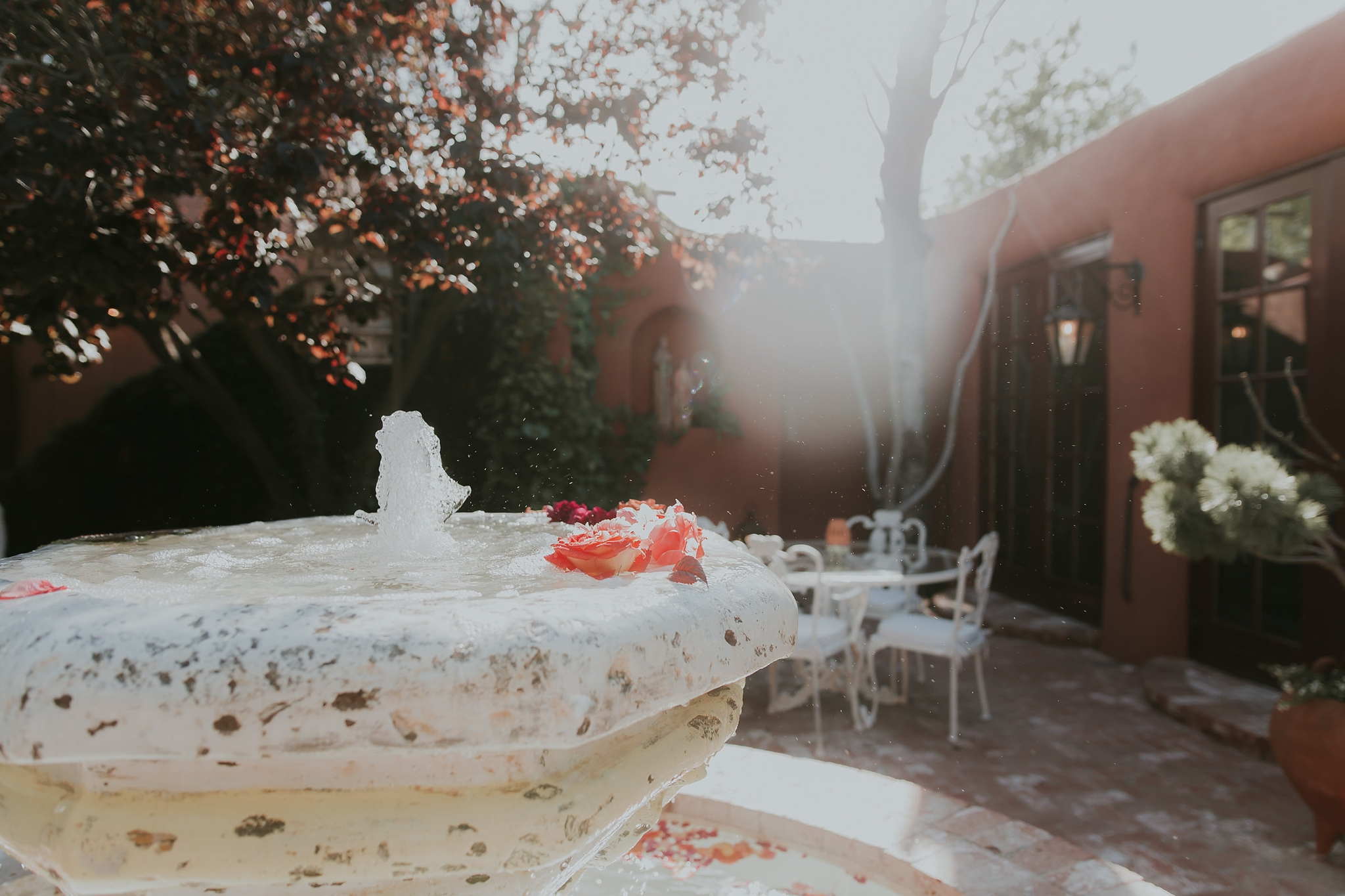 Alicia+lucia+photography+-+albuquerque+wedding+photographer+-+santa+fe+wedding+photography+-+new+mexico+wedding+photographer+-+new+mexico+wedding+-+wedding+venues+-+new+mexico+wedding+venues+-+colorado+wedding+venues_0096.jpg