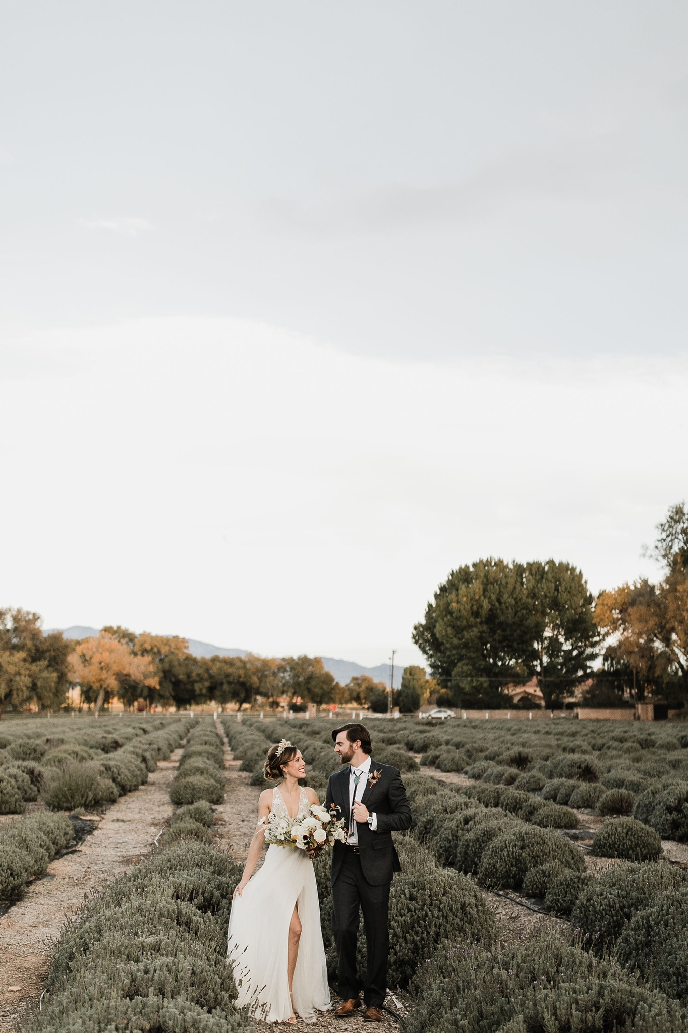 Alicia+lucia+photography+-+albuquerque+wedding+photographer+-+santa+fe+wedding+photography+-+new+mexico+wedding+photographer+-+new+mexico+wedding+-+albuquerque+wedding+-+rocky+mountain+bride+-+los+poblanos+wedding_0096.jpg