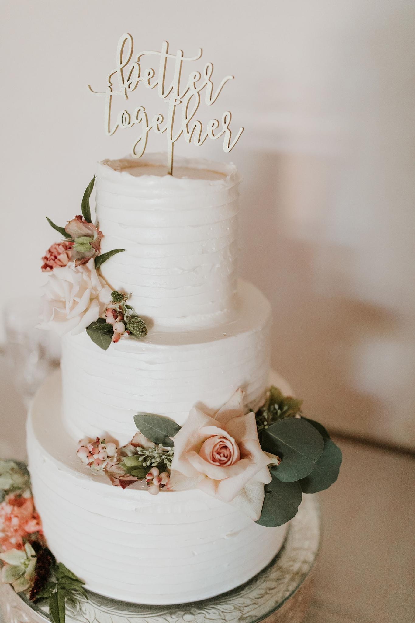 Alicia+lucia+photography+-+albuquerque+wedding+photographer+-+santa+fe+wedding+photography+-+new+mexico+wedding+photographer+-+wedding+reception+-+wedding+cake+-+wedding+sweets+-+maggies+cakes_0013.jpg