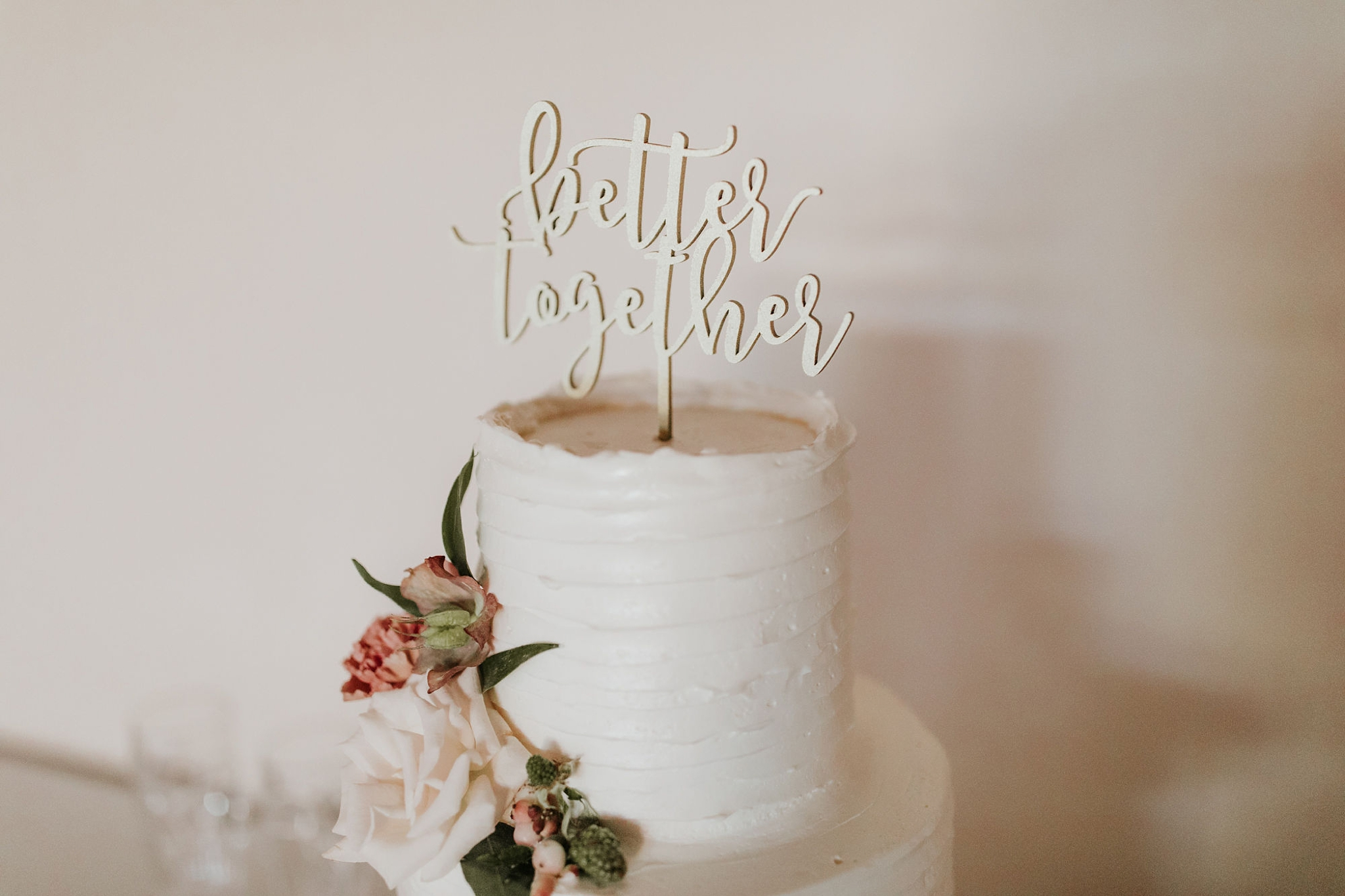 Alicia+lucia+photography+-+albuquerque+wedding+photographer+-+santa+fe+wedding+photography+-+new+mexico+wedding+photographer+-+wedding+reception+-+wedding+cake+-+wedding+sweets+-+maggies+cakes_0014.jpg