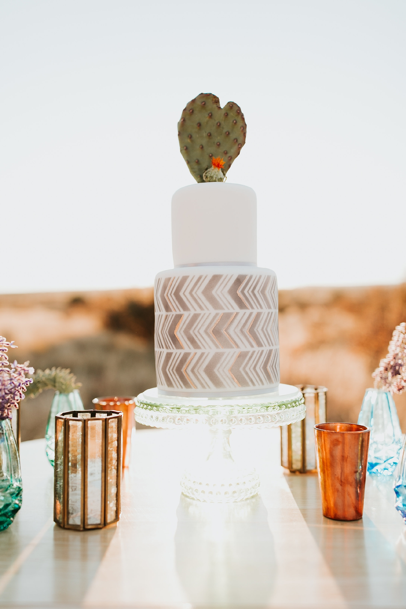 Alicia+lucia+photography+-+albuquerque+wedding+photographer+-+santa+fe+wedding+photography+-+new+mexico+wedding+photographer+-+wedding+reception+-+wedding+cake+-+wedding+sweets+-+maggies+cakes_0022.jpg