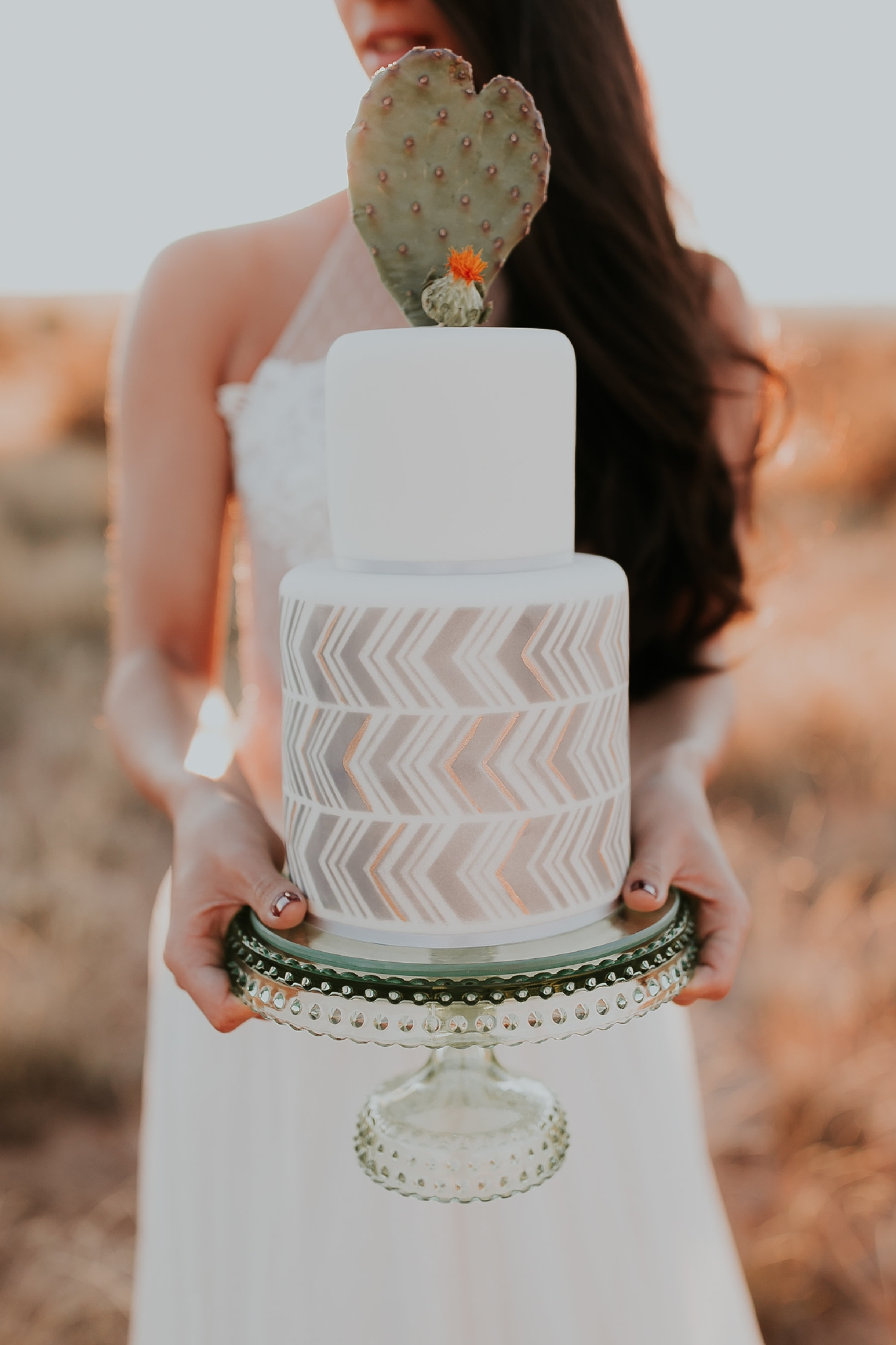 Alicia+lucia+photography+-+albuquerque+wedding+photographer+-+santa+fe+wedding+photography+-+new+mexico+wedding+photographer+-+wedding+reception+-+wedding+cake+-+wedding+sweets+-+maggies+cakes_0023.jpg
