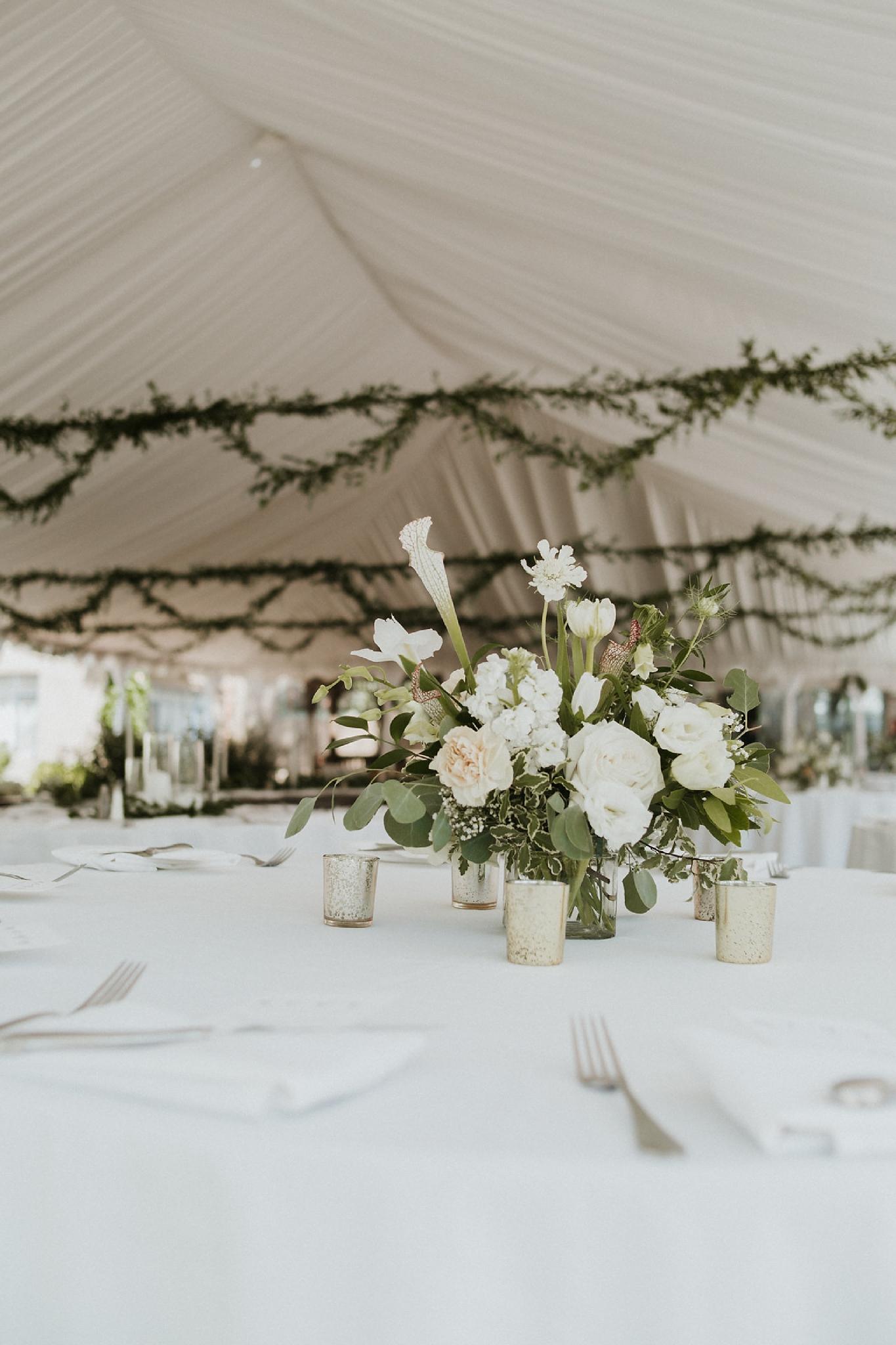 Alicia+lucia+photography+-+albuquerque+wedding+photographer+-+santa+fe+wedding+photography+-+new+mexico+wedding+photographer+-+new+mexico+florist+-+wedding+florist+-+renegade+floral_0018.jpg