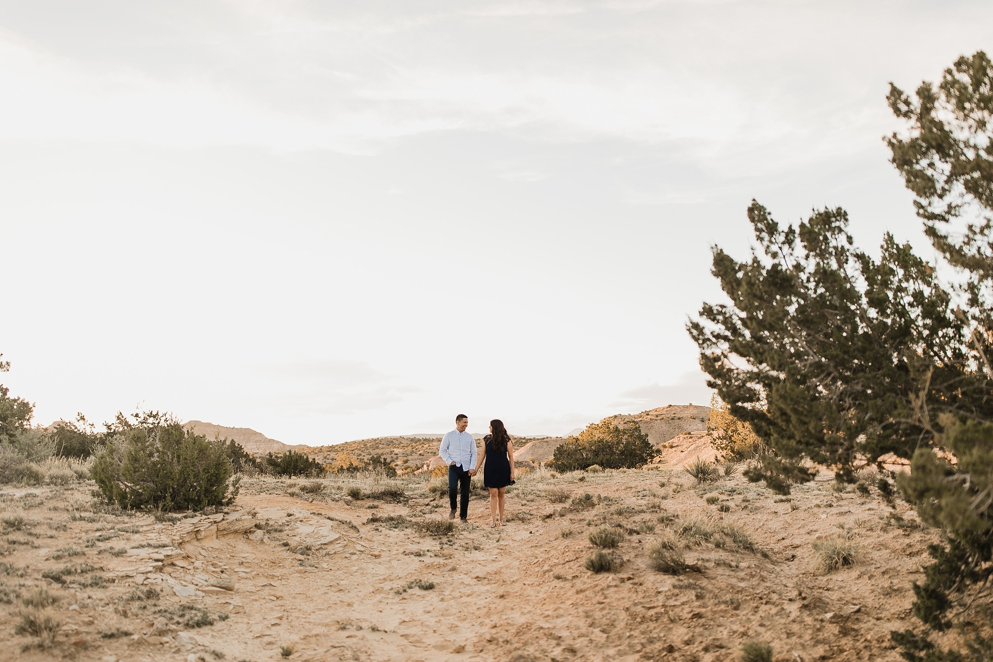 Alicia+lucia+photography+-+albuquerque+wedding+photographer+-+santa+fe+wedding+photography+-+new+mexico+wedding+photographer+-+new+mexico+wedding+-+new+mexico+engagement+-+white+mesa+engagement+-+desert+engagement_0015.jpg