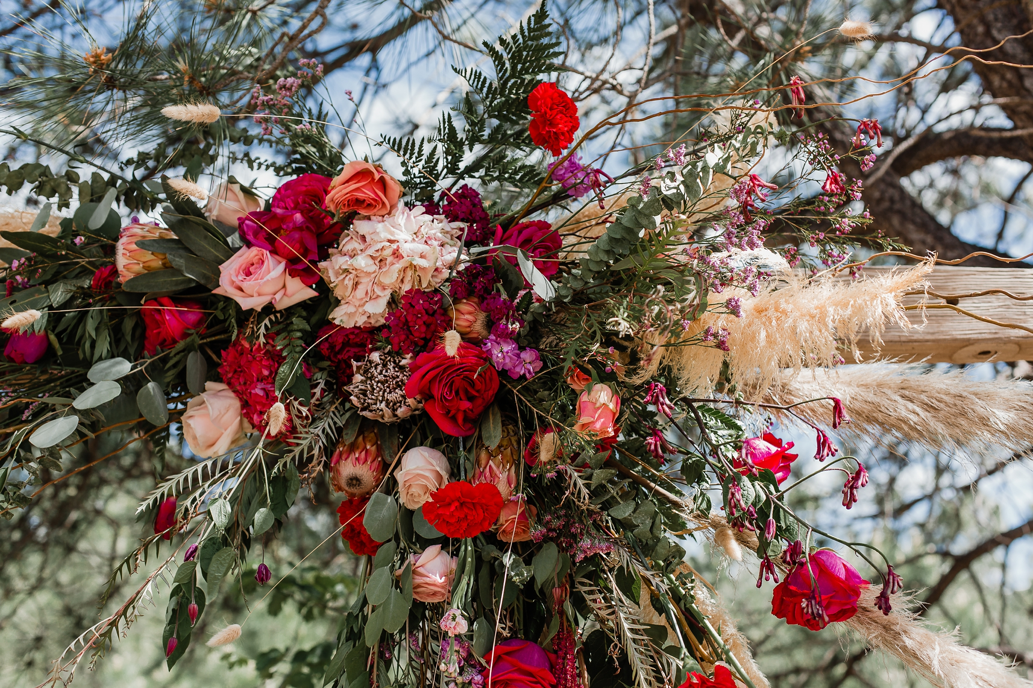 Alicia+lucia+photography+-+albuquerque+wedding+photographer+-+santa+fe+wedding+photography+-+new+mexico+wedding+photographer+-+new+mexico+wedding+-+new+mexico+wedding+-+barn+wedding+-+enchanted+vine+barn+wedding+-+ruidoso+wedding_0032.jpg