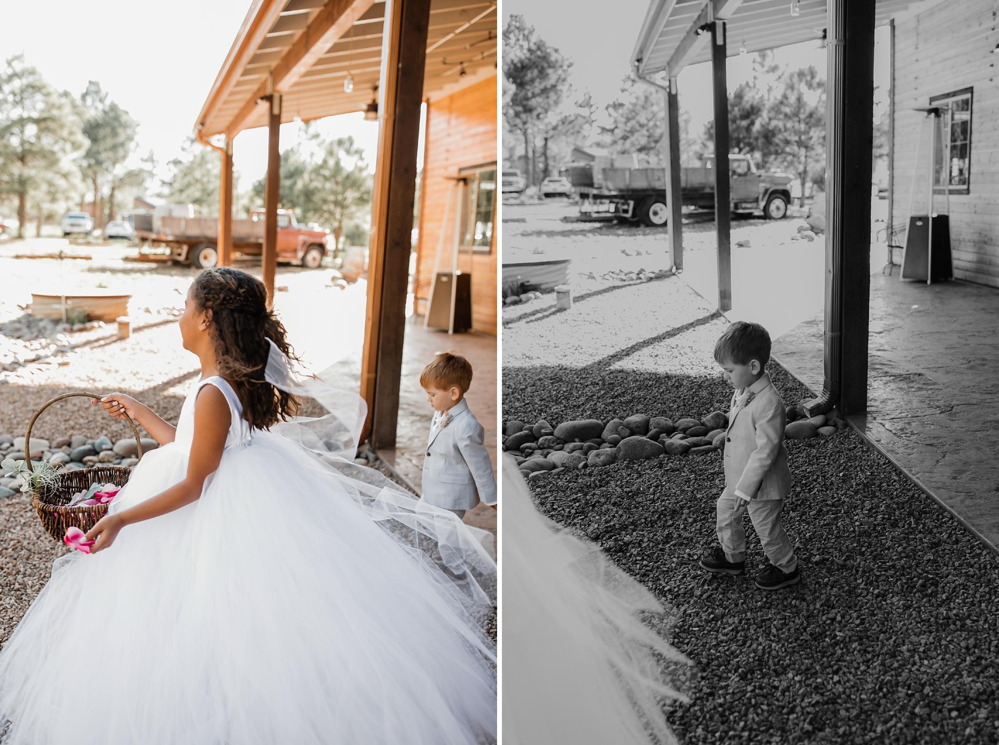 Alicia+lucia+photography+-+albuquerque+wedding+photographer+-+santa+fe+wedding+photography+-+new+mexico+wedding+photographer+-+new+mexico+wedding+-+new+mexico+wedding+-+barn+wedding+-+enchanted+vine+barn+wedding+-+ruidoso+wedding_0088.jpg