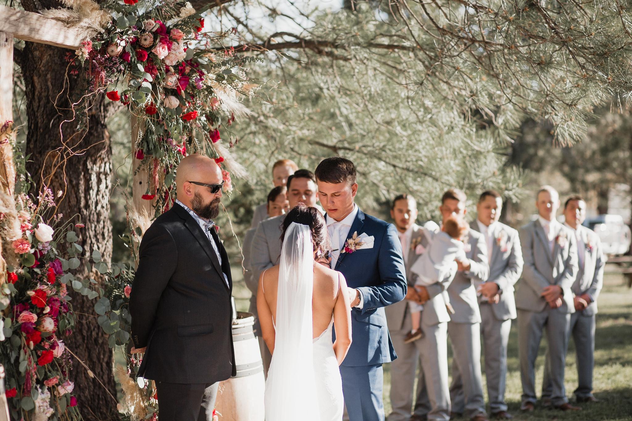 Alicia+lucia+photography+-+albuquerque+wedding+photographer+-+santa+fe+wedding+photography+-+new+mexico+wedding+photographer+-+new+mexico+wedding+-+new+mexico+wedding+-+barn+wedding+-+enchanted+vine+barn+wedding+-+ruidoso+wedding_0101.jpg