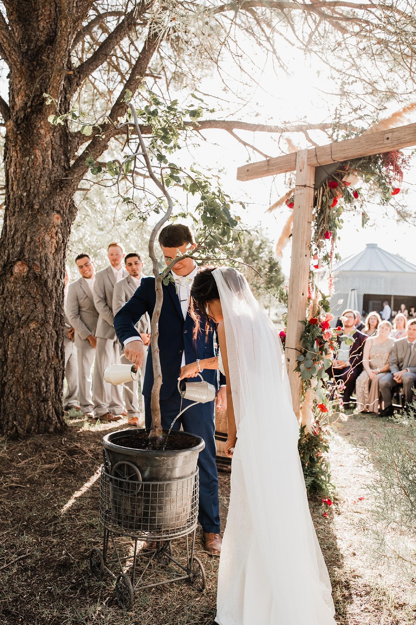 Alicia+lucia+photography+-+albuquerque+wedding+photographer+-+santa+fe+wedding+photography+-+new+mexico+wedding+photographer+-+new+mexico+wedding+-+new+mexico+wedding+-+barn+wedding+-+enchanted+vine+barn+wedding+-+ruidoso+wedding_0106.jpg