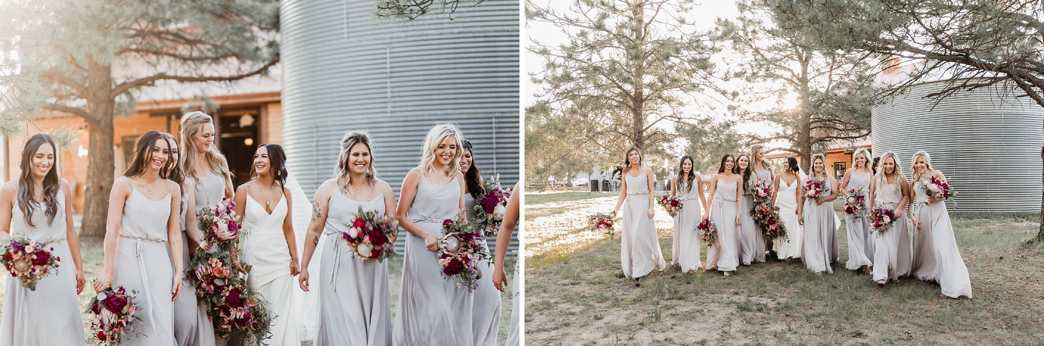 Alicia+lucia+photography+-+albuquerque+wedding+photographer+-+santa+fe+wedding+photography+-+new+mexico+wedding+photographer+-+new+mexico+wedding+-+new+mexico+wedding+-+barn+wedding+-+enchanted+vine+barn+wedding+-+ruidoso+wedding_0120.jpg