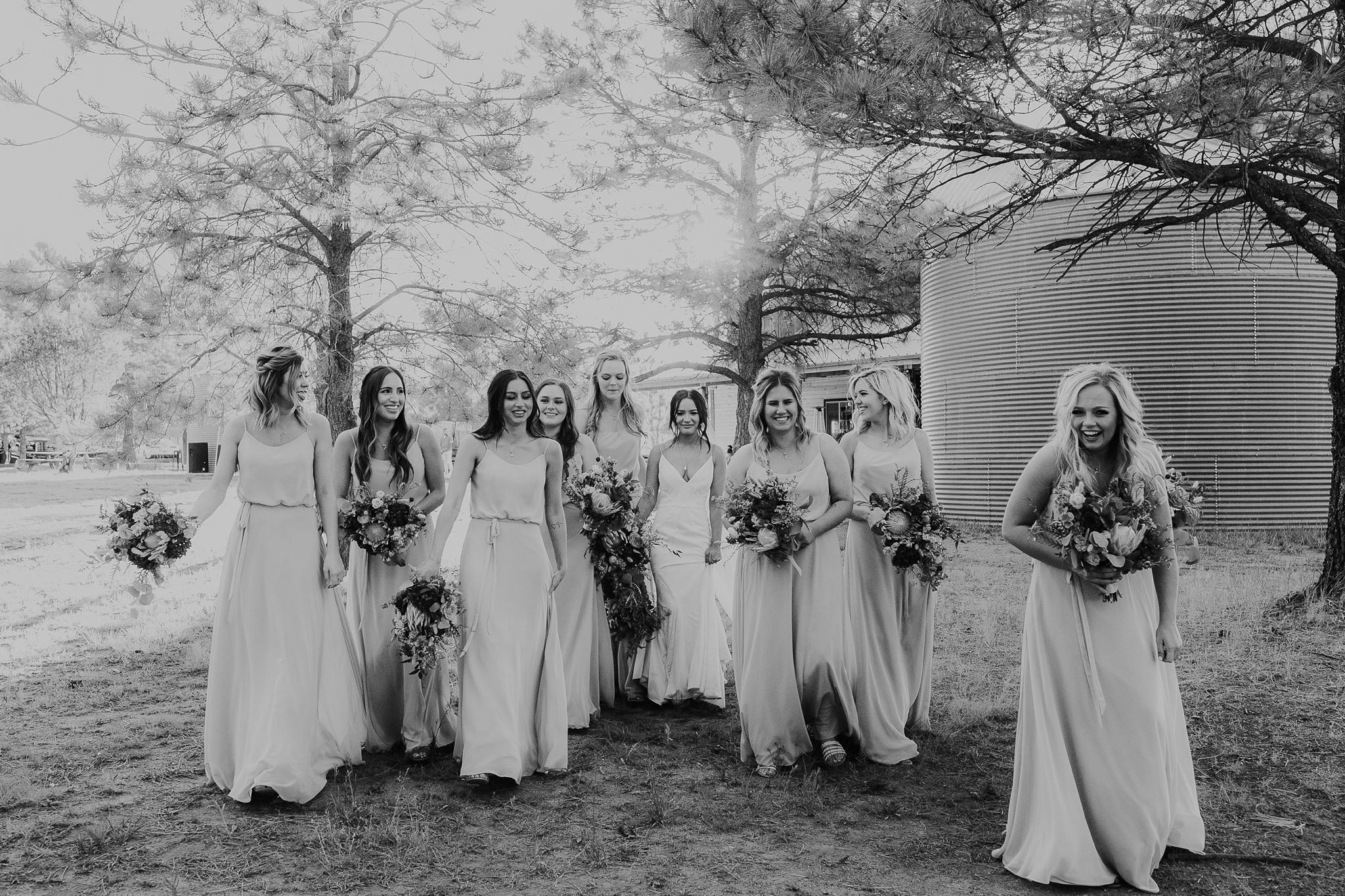 Alicia+lucia+photography+-+albuquerque+wedding+photographer+-+santa+fe+wedding+photography+-+new+mexico+wedding+photographer+-+new+mexico+wedding+-+new+mexico+wedding+-+barn+wedding+-+enchanted+vine+barn+wedding+-+ruidoso+wedding_0121.jpg