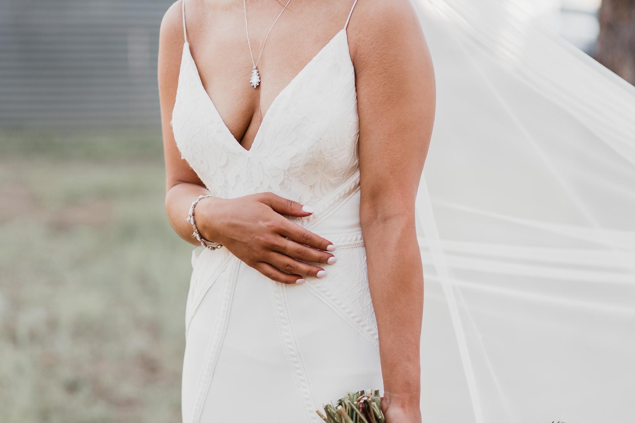 Alicia+lucia+photography+-+albuquerque+wedding+photographer+-+santa+fe+wedding+photography+-+new+mexico+wedding+photographer+-+new+mexico+wedding+-+new+mexico+wedding+-+barn+wedding+-+enchanted+vine+barn+wedding+-+ruidoso+wedding_0124.jpg