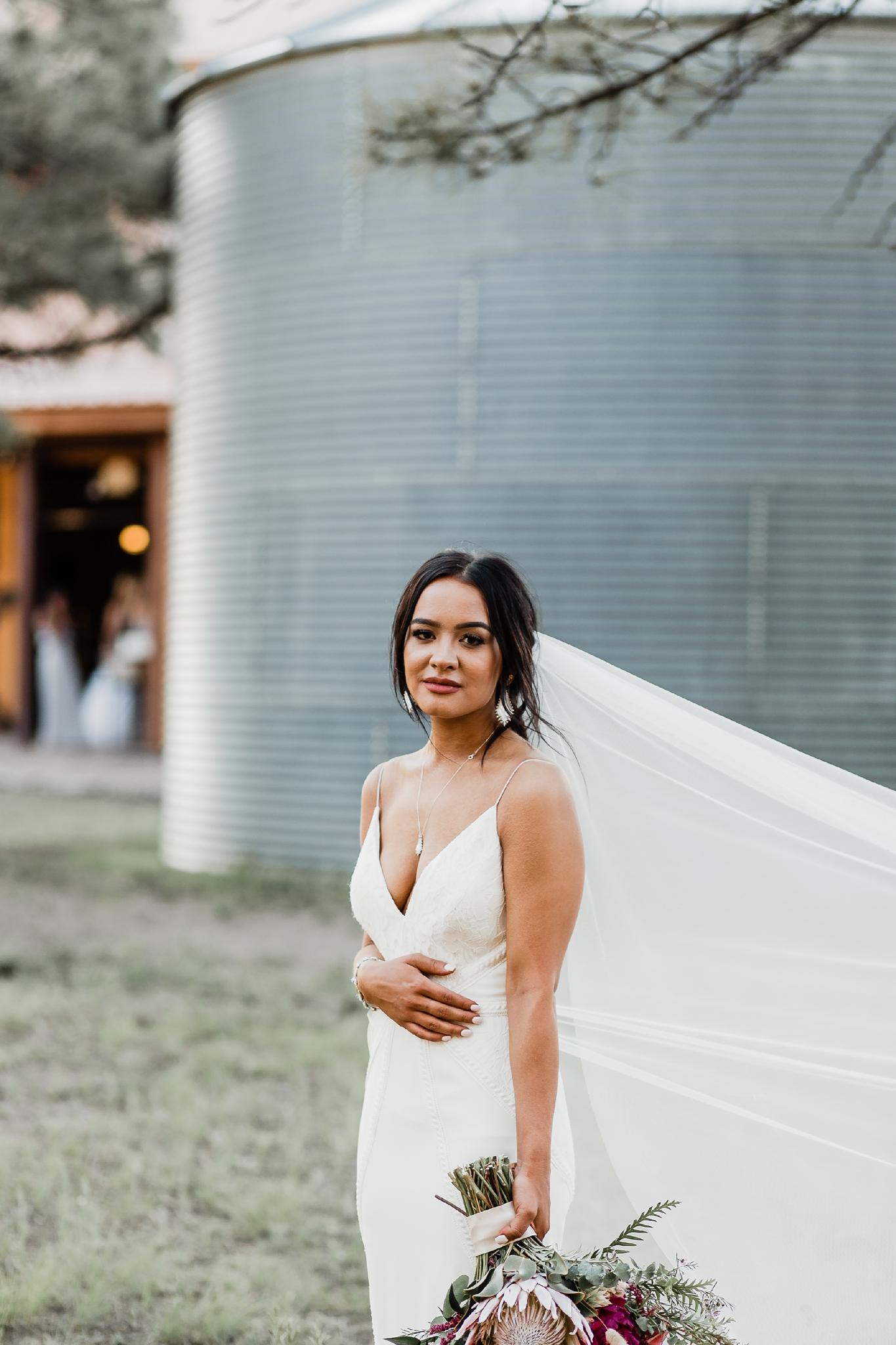 Alicia+lucia+photography+-+albuquerque+wedding+photographer+-+santa+fe+wedding+photography+-+new+mexico+wedding+photographer+-+new+mexico+wedding+-+new+mexico+wedding+-+barn+wedding+-+enchanted+vine+barn+wedding+-+ruidoso+wedding_0123.jpg