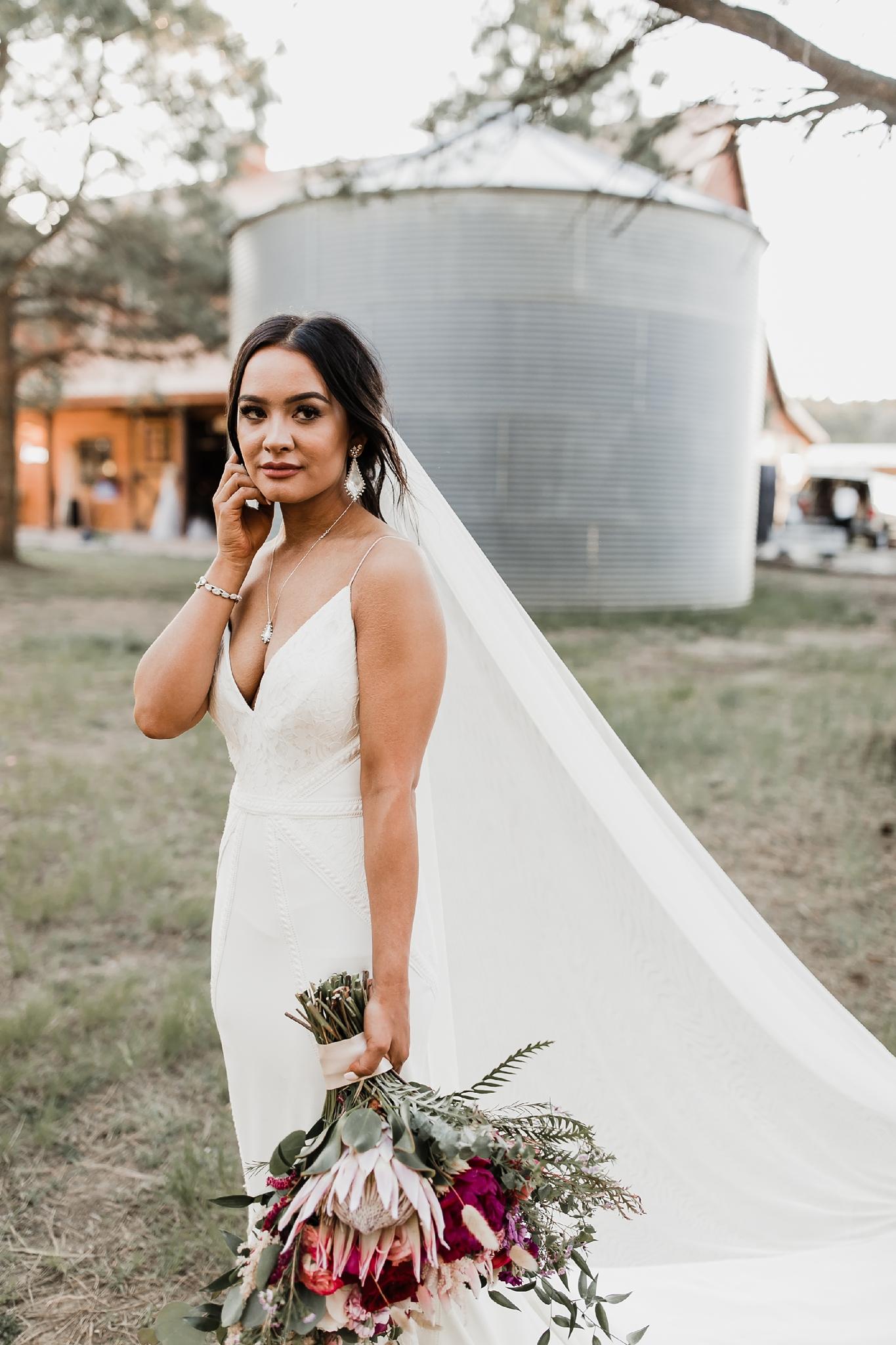 Alicia+lucia+photography+-+albuquerque+wedding+photographer+-+santa+fe+wedding+photography+-+new+mexico+wedding+photographer+-+new+mexico+wedding+-+new+mexico+wedding+-+barn+wedding+-+enchanted+vine+barn+wedding+-+ruidoso+wedding_0125.jpg