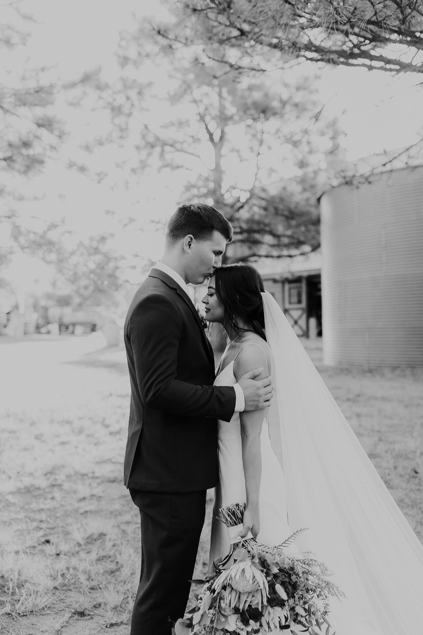 Alicia+lucia+photography+-+albuquerque+wedding+photographer+-+santa+fe+wedding+photography+-+new+mexico+wedding+photographer+-+new+mexico+wedding+-+new+mexico+wedding+-+barn+wedding+-+enchanted+vine+barn+wedding+-+ruidoso+wedding_0127.jpg