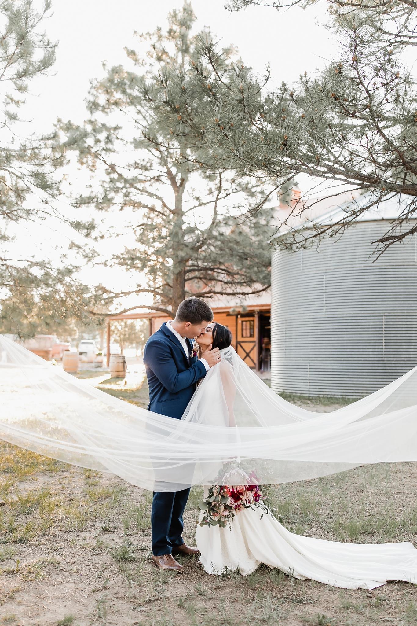 Alicia+lucia+photography+-+albuquerque+wedding+photographer+-+santa+fe+wedding+photography+-+new+mexico+wedding+photographer+-+new+mexico+wedding+-+new+mexico+wedding+-+barn+wedding+-+enchanted+vine+barn+wedding+-+ruidoso+wedding_0126.jpg